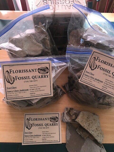 Eocene Experience Kits