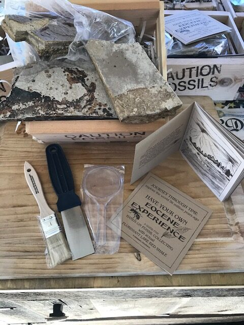 Ecosene Adventure Kits