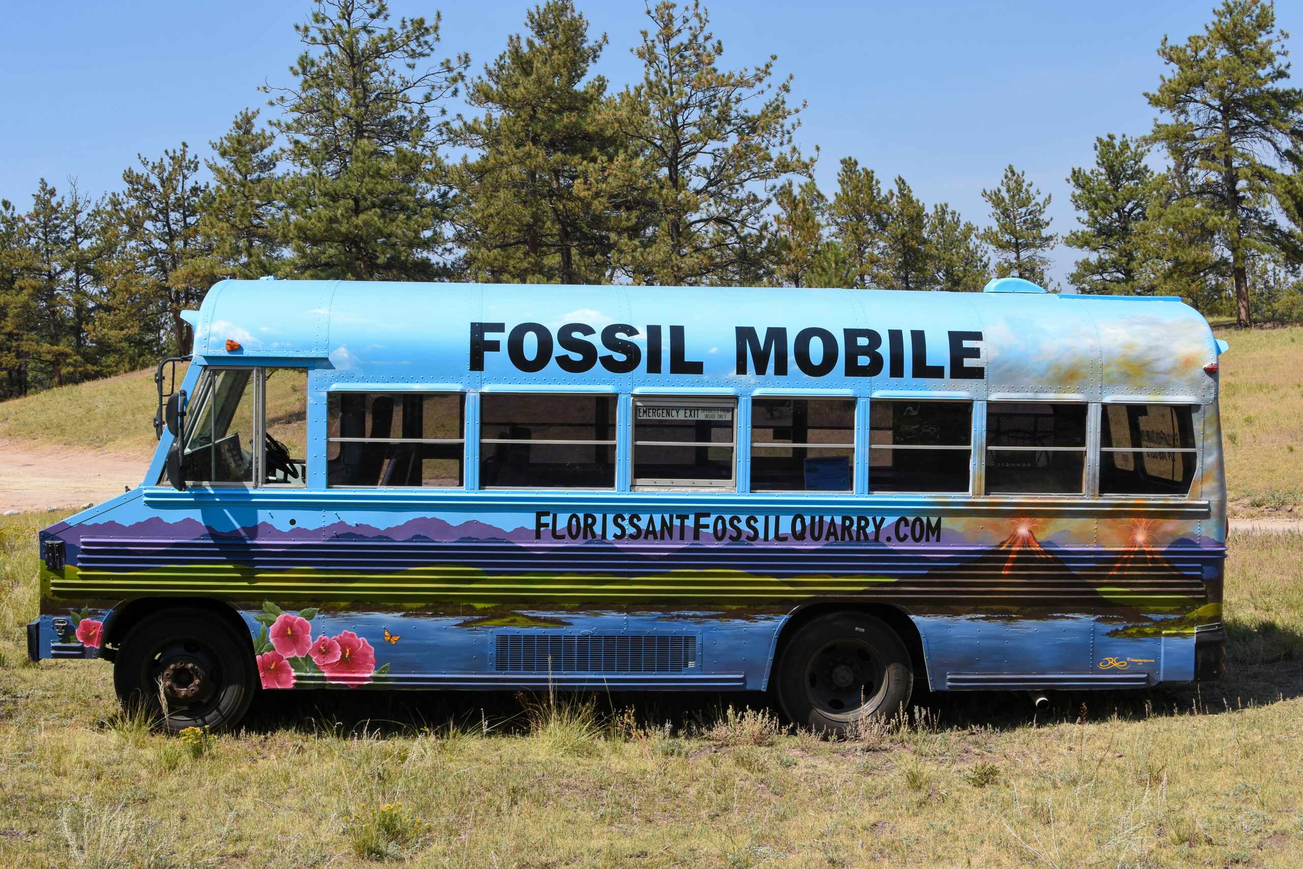 Fossil Mobile